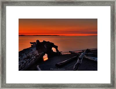 Sunset At Marina Beach Park In Edmonds Washington Framed Print by Sarai Rachel