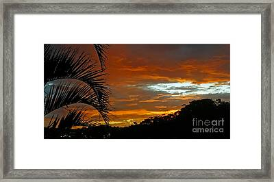 Sunset Behind The Palms Framed Print by Kaye Menner