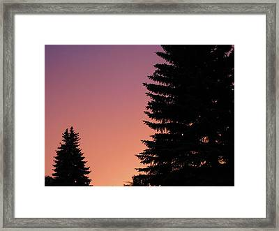 Framed Print featuring the photograph Sunset Between Two Evergreens by Brian Sereda