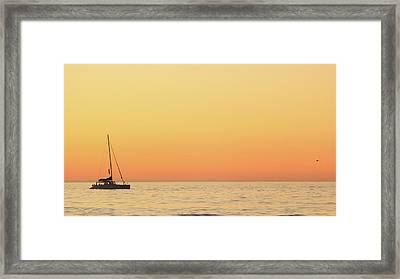Sunset Cruise At Cape Town Framed Print by Tony Hawthorne