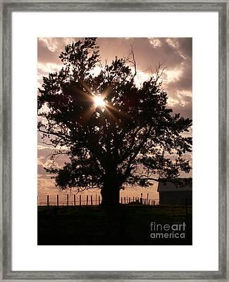 Sunset Framed Print by David Bearden