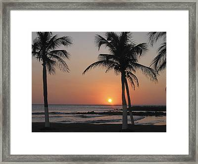 Framed Print featuring the photograph Sunset by David Gleeson