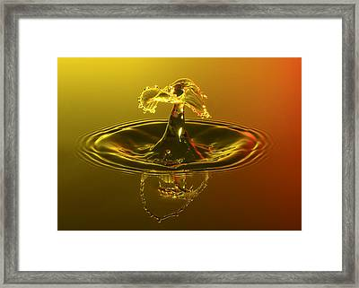 Sunset Drop Framed Print by Nick Field