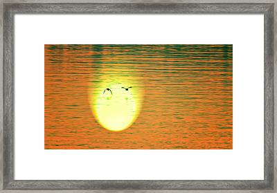 Sunset Flight Framed Print by Bill Tiepelman