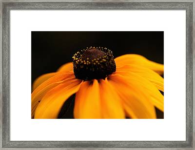Sunset Framed Print by Gabriel Calahorra