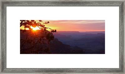 Sunset In Grand Canyon Framed Print by Olga Vlasenko
