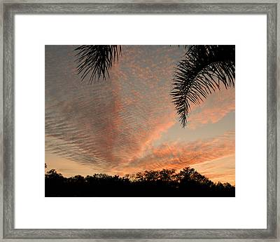 Sunset In Lace Framed Print