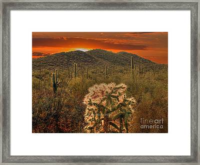 Sunset In The Desert Framed Print by Jim Wright