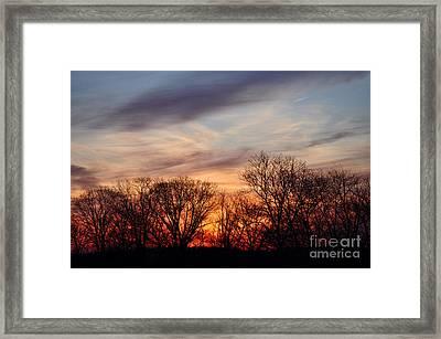 Sunset In The Trees Framed Print