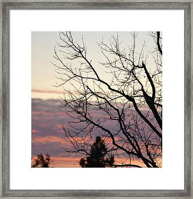 Sunset Of Winter's Beauty Framed Print by Naomi Berhane