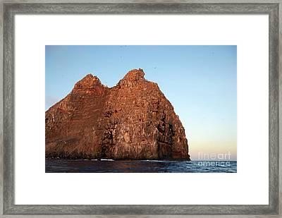Sunset On Cliffs Of Wolf Island Framed Print by Sami Sarkis