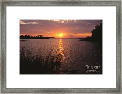 Sunset On Eagle Harbor Framed Print by Sandra Bronstein