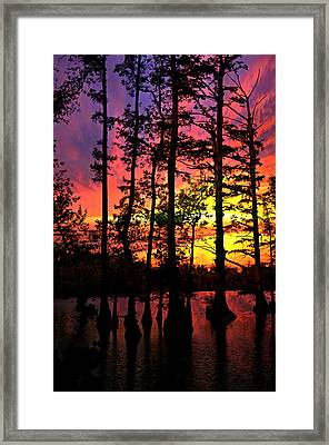 Sunset On Horseshoe Lake 1 Framed Print by Marty Koch