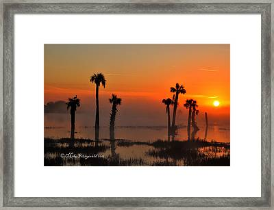 Sunset On Viera Wetlands Framed Print