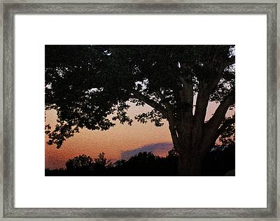 Sunset Over A Witness Tree Framed Print by Dave Sandt