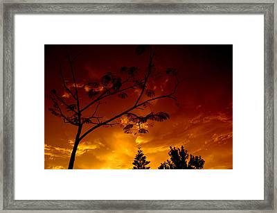 Sunset Over Florida Framed Print