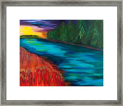 Sunset Over Pines Framed Print by Dani Altieri Marinucci