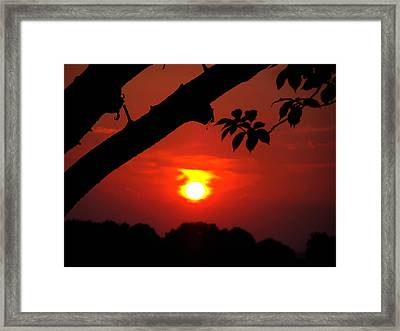 Sunset Over The Golf Course Framed Print by Kimberly Perry