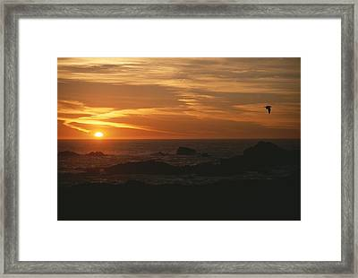 Sunset Over The Pacific Ocean Framed Print by Todd Gipstein