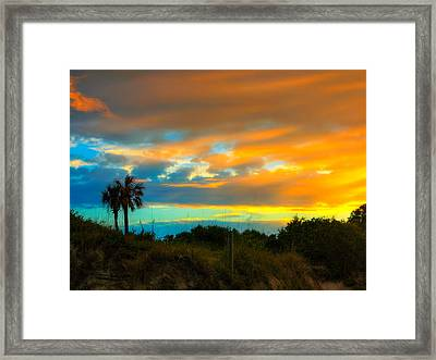 Sunset Palm Folly Beach  Framed Print by Jenny Ellen Photography