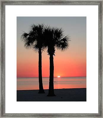 Sunset Pink Framed Print