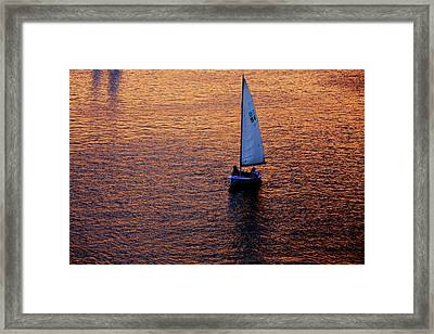 Sunset Sailing Framed Print by Rick Berk