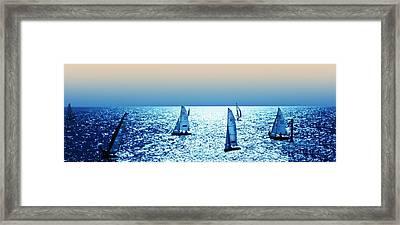 Sunset Sailing Framed Print by Sharon Lisa Clarke