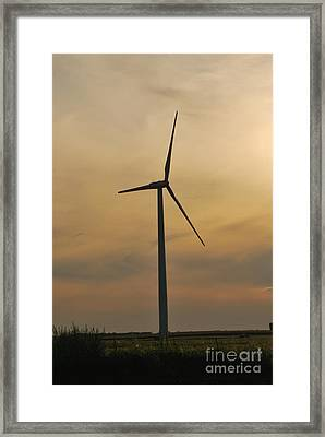 Sunset Sentinel Framed Print by Michelle Hastings