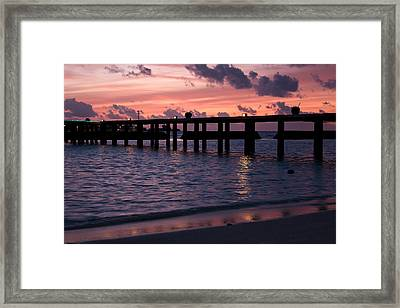 Sunset Framed Print by Shirley Mitchell