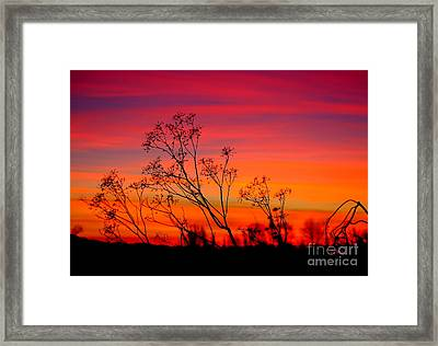 Sunset Silhouette Framed Print by Patrick Witz