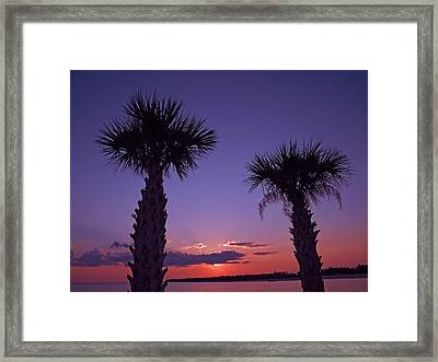 Framed Print featuring the photograph Sunset Through The Palms by Brian Wright