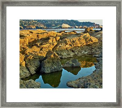 Sunset Tidepool Larry Darnell Point Lobos Central California Landscape Framed Print by Larry Darnell