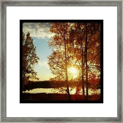 Sunset #trees #sunset Framed Print
