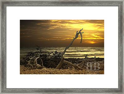 Sunset West II Framed Print by Bruce Bain