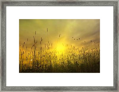 Sunsets To Remember Framed Print