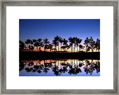Framed Print featuring the photograph Sunsettrees by Bill Lucas