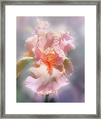 Framed Print featuring the digital art Sunshine Bliss by Mary Almond