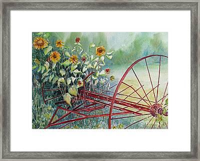 Sunshine Coming Through Framed Print by Louise Peardon