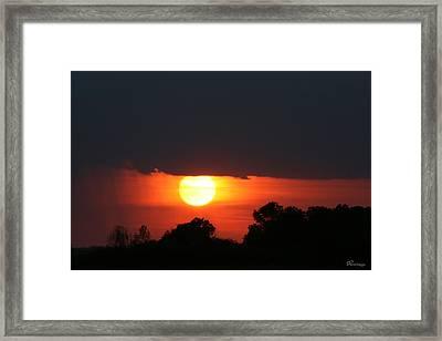 Sunshine In Rain Framed Print by Andrea Lawrence
