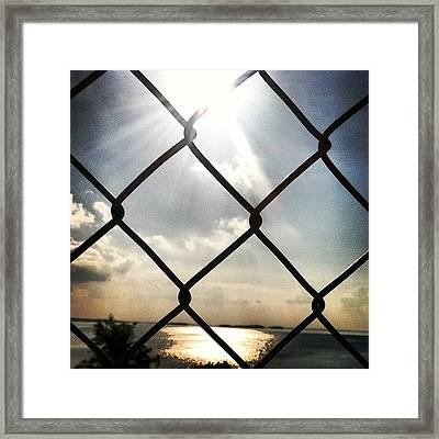 Sunshine In The Afternoon Framed Print