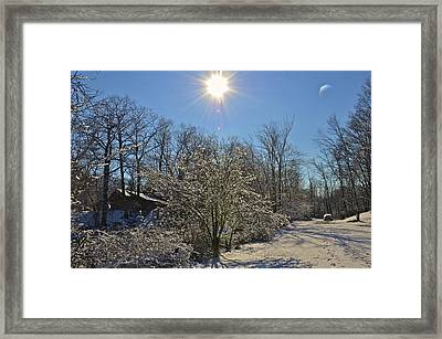 Sunshine In The Snow Framed Print by Nancy Rohrig