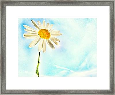Sunshine Framed Print by Marianna Mills