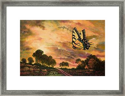 Sunshine Traveler-swallowtail Framed Print by Michael Frank