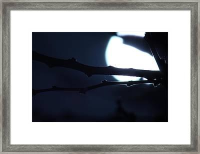 Framed Print featuring the photograph Supermoon IIi by Carolina Liechtenstein
