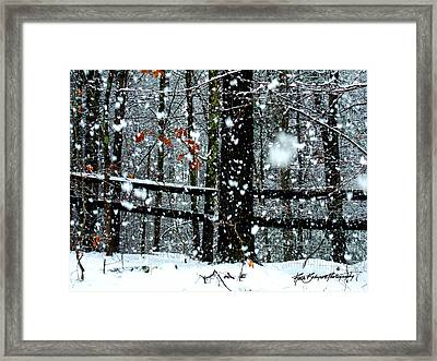 Supersized Snowflakes Framed Print by Ruth Bodycott