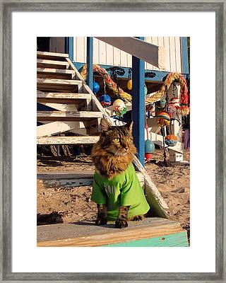 Surfer Dude Framed Print by Joann Biondi
