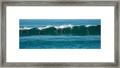Surfing Dolphins 2 Framed Print