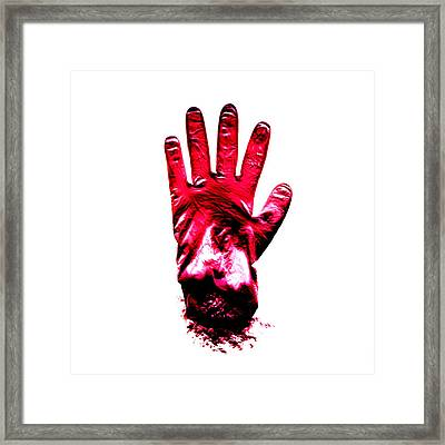 Surgical Glove Framed Print by Kevin Curtis