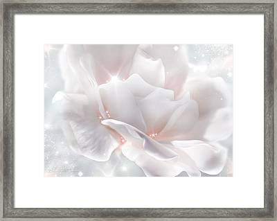 Surprise Rose Framed Print by Svetlana Sewell