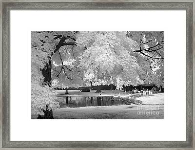 Surreal Dreamy Black White Flamingo Pond  Framed Print by Kathy Fornal